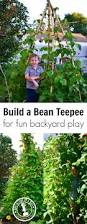 how to make a bean teepee for backyard play adventure in a box