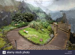 Botanical Garden Station by Inside The Sub Antarctic Plant House In The Royal Tasmanian