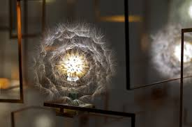 Chandelier Led Lights Real Dandelions Surround Led Lights In Unique Chandeliers