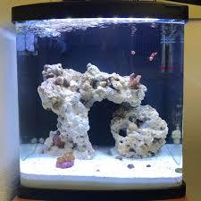 best lighting for corals best retrofit lighting for biocube 16 lighting forum nano reef