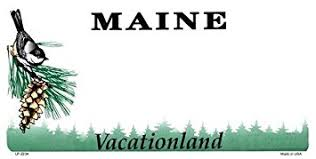 Maine Vanity License Plates Amazon Com Poodle Vanity Metal Pet Dog Breed Novelty License