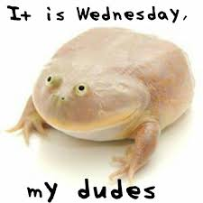 Meme Wednesday - it is wednesday my dudes know your meme