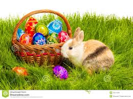bunny basket eggs easter egg and bunny in basket royalty free stock photos image
