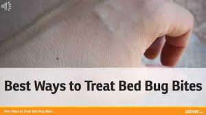 remedies for bed bug bites best ways to treat bed bug bites youtube