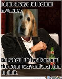 Annoyed Dog Meme - the most annoying dog in the world by samuraijackal meme center