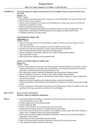 food service resume food service director resume sles velvet