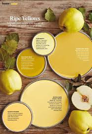 ripe yellows paint palette paint color used sunswept 083 4 by