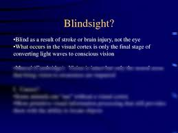 What Is Blind Sight Blindsight And Depth Notes Psychology 101 With Short At Arizona