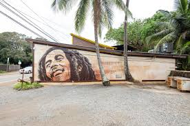 cryptik mural pow wow hawaiipow wow hawaii murals cryptik mural cryptik