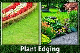 Landscape Flower Garden by Colorful Flower Bed Border Attractive Flower Bed Edging Ideas