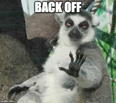Back Off Meme - stoner lemur meme imgflip