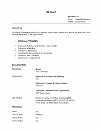 Biodata Resume Sample by Resume Film Dop Examples Of Hr Resumes Resume For Developer