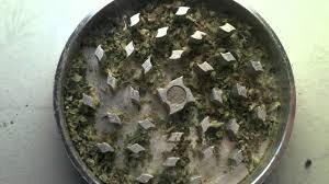 Coffee Grinder Marijuana How To Grind Weed U0026 Break Up Your Bud Using An Herb Crusher
