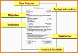 First Resume Example by 7 First Resume Template Nypd Resume
