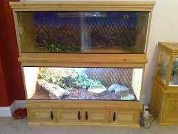 building a terrarium vivarium reptile boards