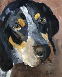 bluetick coonhound gascon 1000 images about bluetick coonhounds blue gascon on pinterest