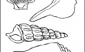 coloring pages home of coloring