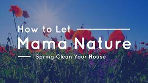 how to spring clean your house how to let mama nature spring clean your house the maids blog