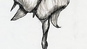 dolphin drawings pencil drawing pencil
