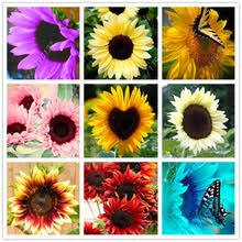 Sunflower Decorations Potted Sunflowers Reviews Online Shopping Potted Sunflowers