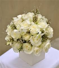 white flowers for winter celebrations and home