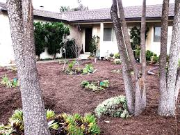 Front Yard Landscaping Without Grass - front yard landscape ideas without grass the garden inspirations
