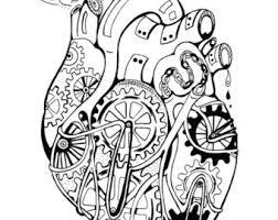 anatomical coloring etsy