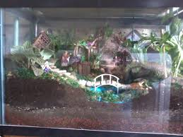 Pinterest Fairy Gardens Ideas by My Fish Tank Fairy Garden Fairy Garden Ideas Pinterest Fish