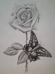 and butterfly design
