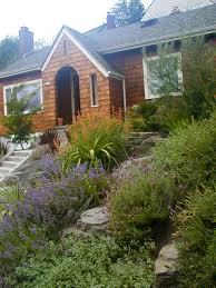 low maintenance low maintenance garden u2013 creative landscapes inc