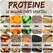 alimentazione ricca di proteine le 10 migliori fonti vegetali di proteine greenme
