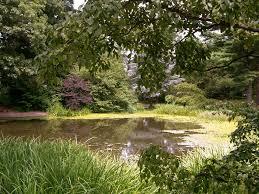 Clark Botanical Gardens Clark Botanical Gardens A Photo From New York Northeast Trekearth
