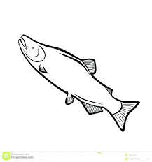 salmon fish coloring page salmon coloring pages salmon coloring pages salmon coloring pages