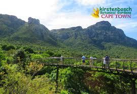 Kirstenbosch Botanical Gardens A Visit To Kirstenbosch Botanical Gardens Cape Town The Travels