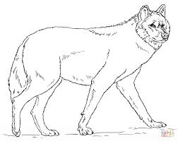 wolf coloring pages shimosoku biz