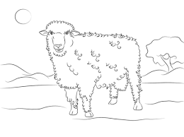 cute corriedale sheep coloring free printable coloring pages