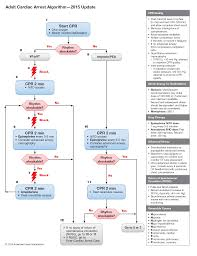 updated resuscitation guidelines 2015