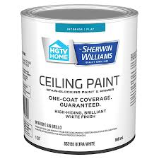what type of sherwin williams paint is best for kitchen cabinets hgtv home by sherwin williams ceiling flat white interior paint 1 quart