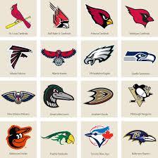 bracket what u0027s the best bird named sports team we have a winner