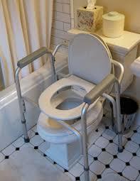 91 best just toilets images on pinterest toilets handicap