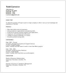 Team Leader Skills Resume Four Elements Of An Essay Sample Cover Letter For A Job Im