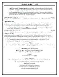consulting resume management consulting resume words 11 sle consultant resume