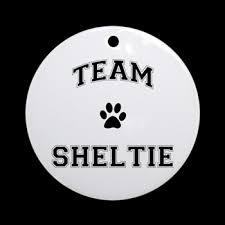 team sheltie ornament team sheltie cafe pets