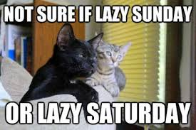 Saturday Meme - not sure if lazy sunday or lazy saturday meme xyz