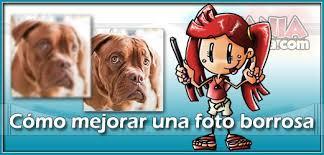 word a pdf imagenes borrosas cómo mejorar una foto borrosa