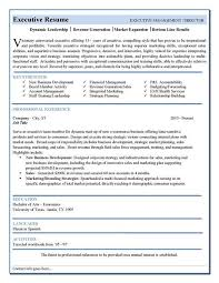 Successful Resume Format Best Executive Resume Format Executive Resume Example Telecom