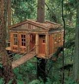 Tree House Floor Plan Cozy Cabin Floor Plans You Can Use To Make Your Getaway