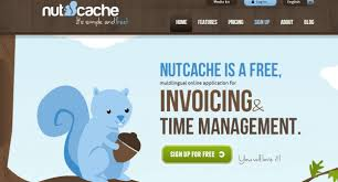 2 color combination creating websites with catchy colors 30 interesting exles top
