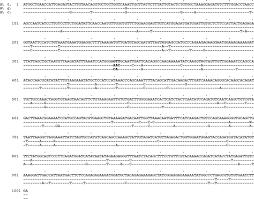 temperature sensitivities of cytosolic malate dehydrogenases from