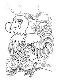 dodo bird outline colouring page fun colouring